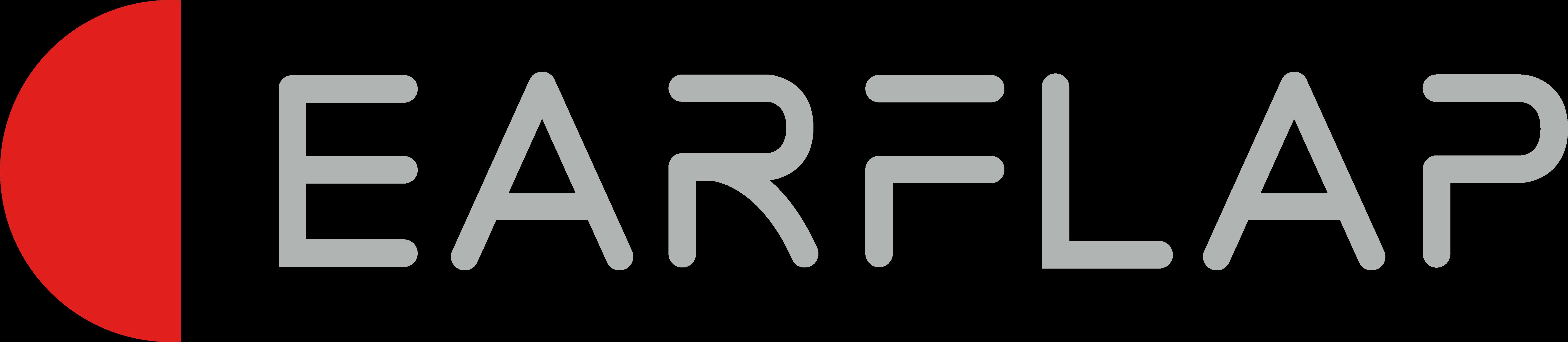 Logo EARFLAP 2020 rectangular GRIS